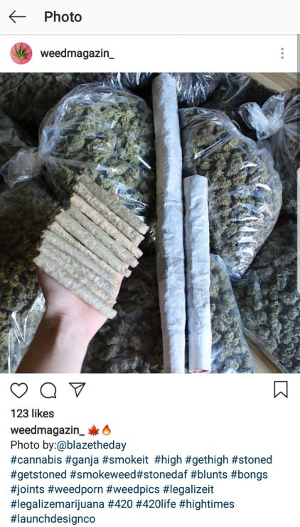 weed instagram accounts for sale